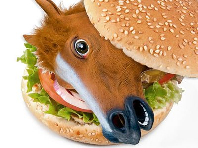horse-hamburger